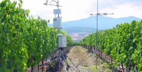 Strumentazioni in campo_Progetto Ga_Vino (Agraria Uniss)