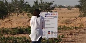 Progetto UE WADIS-MAR_NRD Uniss