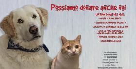 Banca veterinaria del sangue Uniss_Immagine web