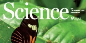 La copertina della rivista Science