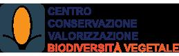 Logo CBV